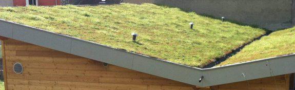 étanchéité et végétalisation de toiture - Allevard - Isère